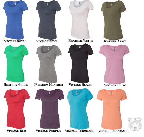 Womens Be a NICE Human Scoop Neck Tee - T Shirt S M L XL XXL (+ Colors)