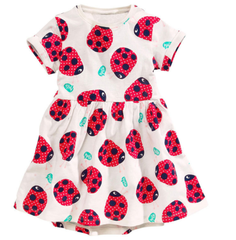Lovely little ladybird dress
