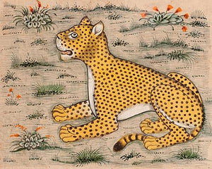 Leopard. Persian manuscript illustration. Fine art print