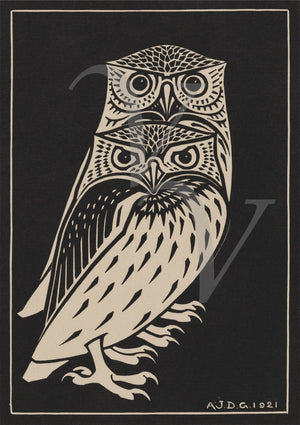 Two Owls. Antique bird woodcut. Fine art print