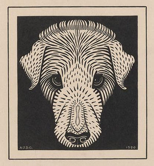 Dog Face. Vintage woodcut. Fine art print