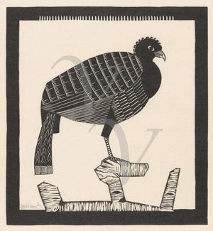 Perched Bird. Antique black and white woodcut. Fine art print