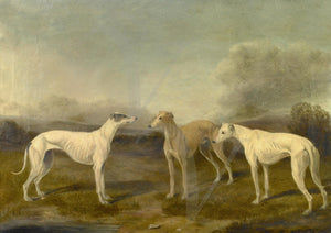 Greyhounds in a Landscape. Antique dog painting. Fine art print