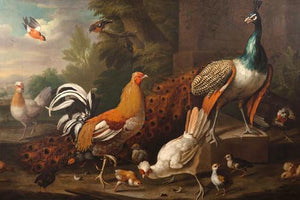 Peacock and Chickens. Antique Painting. Fine Art Print