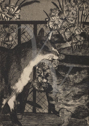 Cat and Flowers etching by Edouard Manet. Fine art print