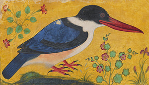 Kingfisher. Antique Indian painting. Fine art print