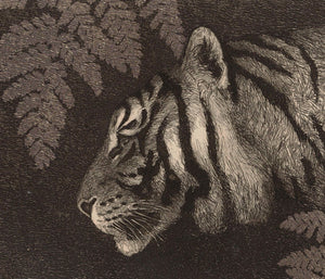 Tiger and Fern. Nature collage. Fine art print