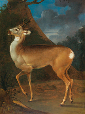 Deer in a landscape antique painting. Fine art print