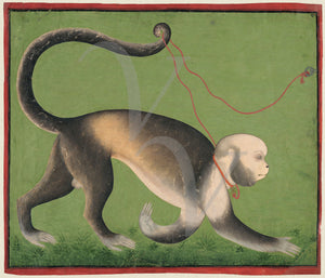 Man-monkey India painting. Fine art print
