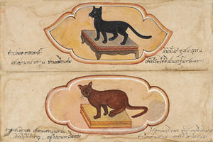 Siamese cats from an antique Thai manuscript. Fine art print