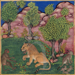Persian Indian fables the monkey and the lion. Fine art print