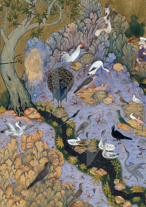 Language of the birds mystical Persian painting. Fine art print