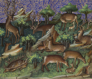 Deer and Stags in a forest from the page a Medieval French illuminated manuscript