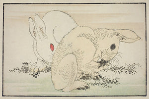 Two Rabbits. Antique Japanese woodblock. Fine Art Print