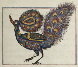 Painting of a peacock from antique Persian/Arabic manuscript on Cosmology