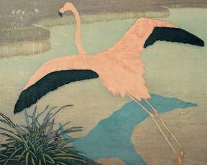 Flamingo in flight painting. Fine art print