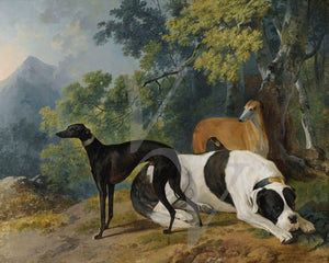 Dogs in a landscape. Antique painting of whippets and a Mastiff. Fine art print