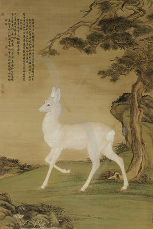 Japanese painting of a deer. Fine art print