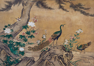 Peacocks in a Landscape Japanese painting. Fine art print