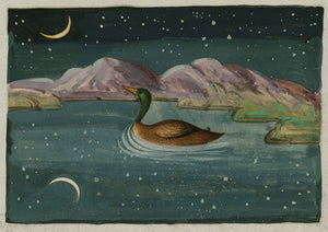Duck by Moonlight. Persian painting from antique manuscript. Fine art print