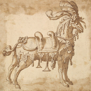 Ceremonial Horse. Antique Italian ink painting. Fine Art Print