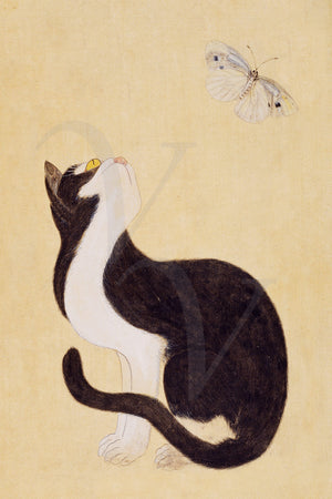 Cat and Butterfly. Antique Korean painting. Fine art print