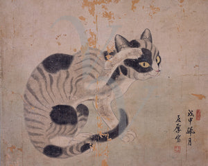 Vintage Korean painting of a cat. Fine art print