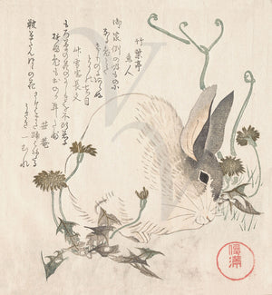 Rabbit in Dandelions. Japanese woodblock fine art print