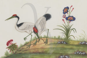 Exotic birds in a landscape. Antique Chinese painting. Fine art print