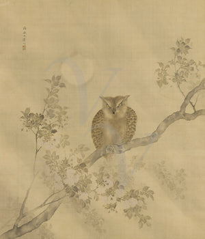 Owl in Moonlight. Japanese painting. Meiji period. Fine art print