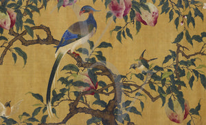 Exotic Birds in Fruit Tree. Antique Chinese painting. Fine Art Print
