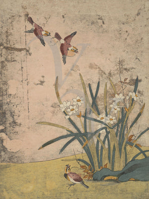 Antique Korean painting of birds and flowers. Fine art print