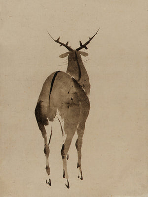 Deer. Japanese ink painting. Fine art print