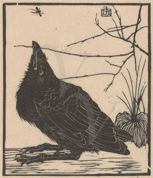 Black crow vintage woodblock fine art print