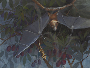 Flying Fox hanging in a tree vintage painting. Fine art print