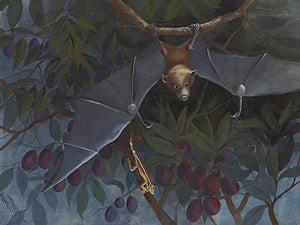 Flying Fox hanging in a tree antique painting. Fine art print