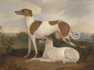 Two Greyhounds in a Landscape by Charles Hancock. Fine art print