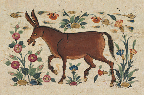 Persian donkey painting. Fine art print