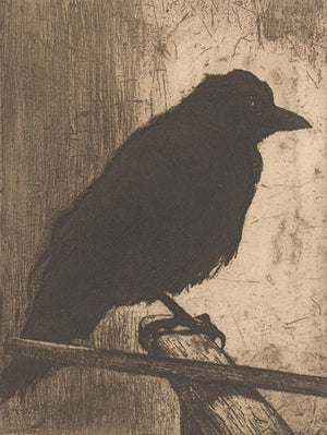 Black crow. Antique etching. Fine art print