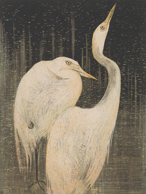 Two herons. Antique bird artwork. Fine art print