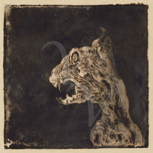 Dark Gothic art. Nightmare cat. Fine art print