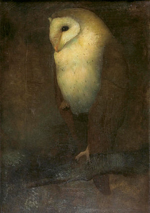 Barn Owl painting by Jan Mankes. Fine art print