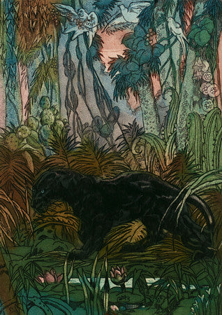 Vintage color etching of a black panther in an exotic jungle. Fine art print