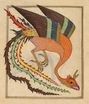 Mythological Simurgh from a Persian bestiary . Fine art print