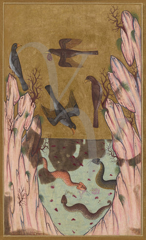Birds and Snakes. Medieval Ottoman Turkish painting. Fine art print