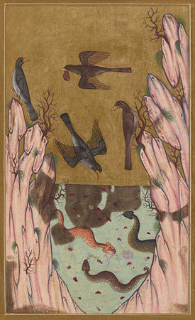 Birds of Prey and Snakes. Medieval Ottoman Turkish painting. Fine art print