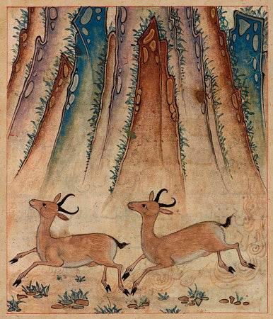 Two gazelles, Persian manuscript illustration from the Manāfi˓-i ḥayavān (The Benefits of Animals). Fine art print