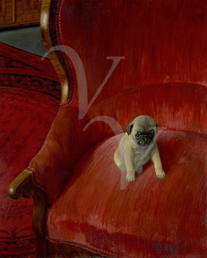 Painting of a Pug pup on a red chair. Siegfried by by Thomas Theodor Heine. Fine art print