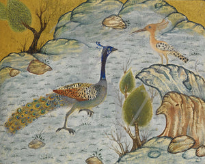 Peacock and a Hoopoe. Persian bird painting. Fine art print