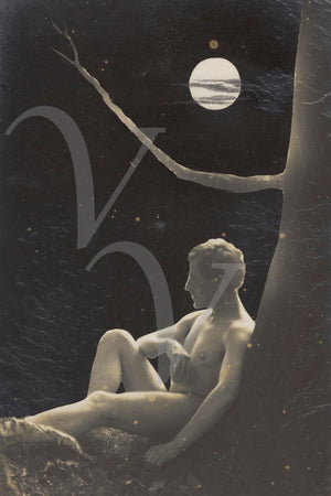 Early (c.1909) homo-erotic photomontage of a nude man sitting under a tree and full moon. Fine art print